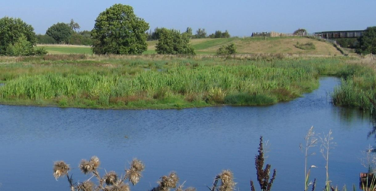 Avenue Washlands Nature Reserve