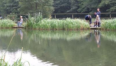 Barlow Trout and Coarse Fishery