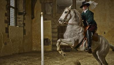 Cavendish's Horses: Historic Equitation