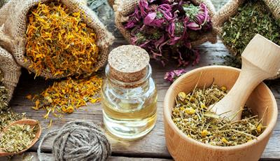 Discover what a herbalist does