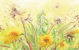 Watercolour painting of dandelions